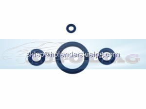 Set external o-rings for injector Vialle 1 cylinder